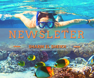 Newsletter Offerte Sharm